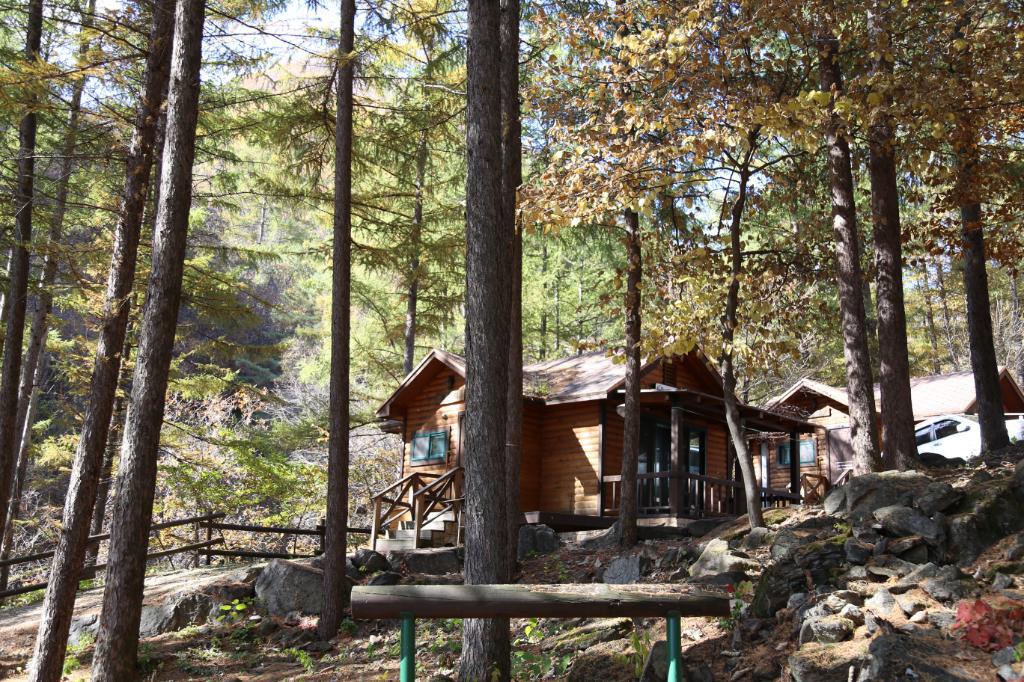 加里山自然休養林