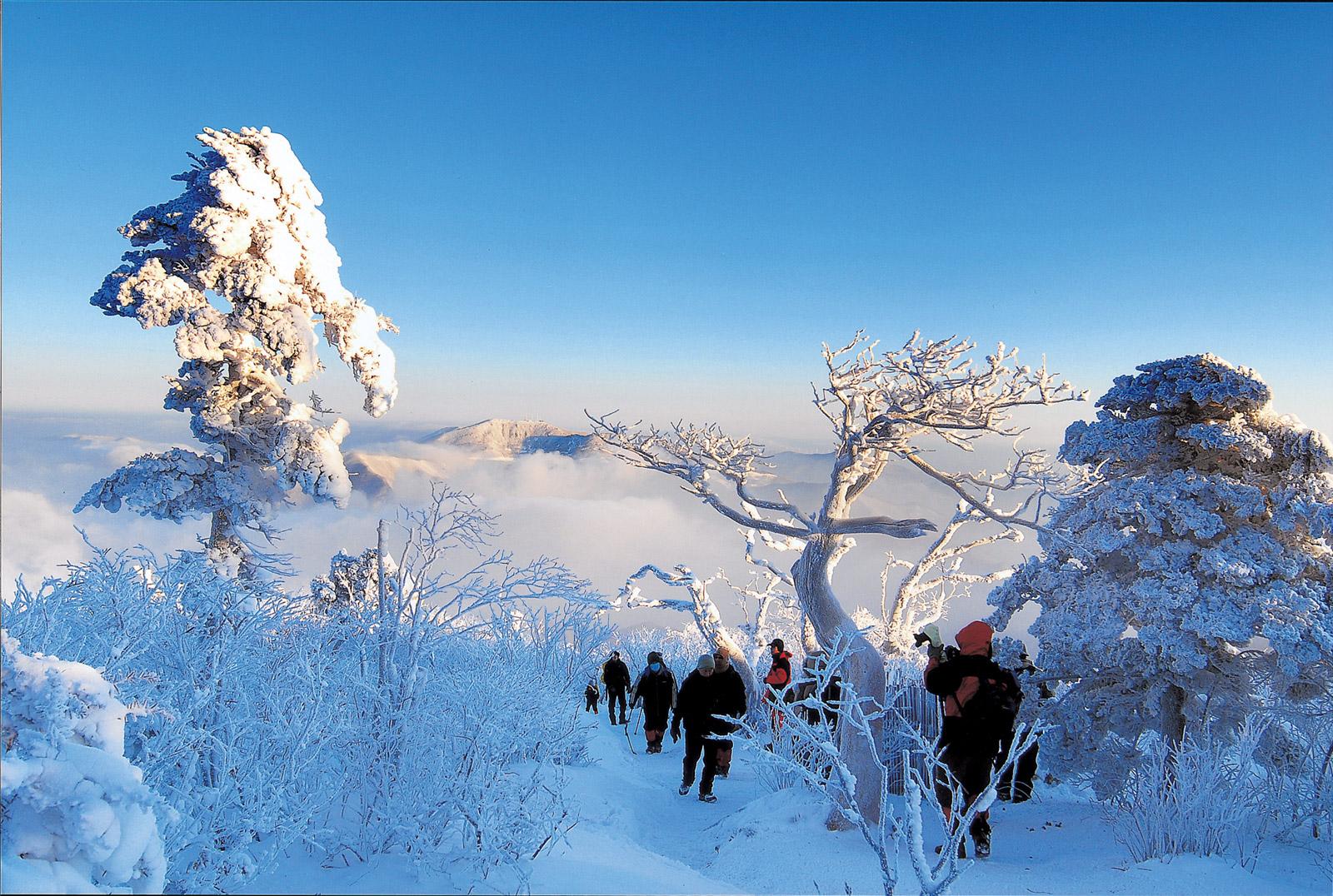太白山国立公園