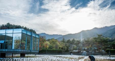 朴寿根美術館