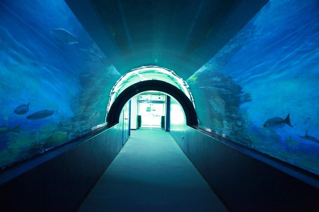 花津浦海洋博物館