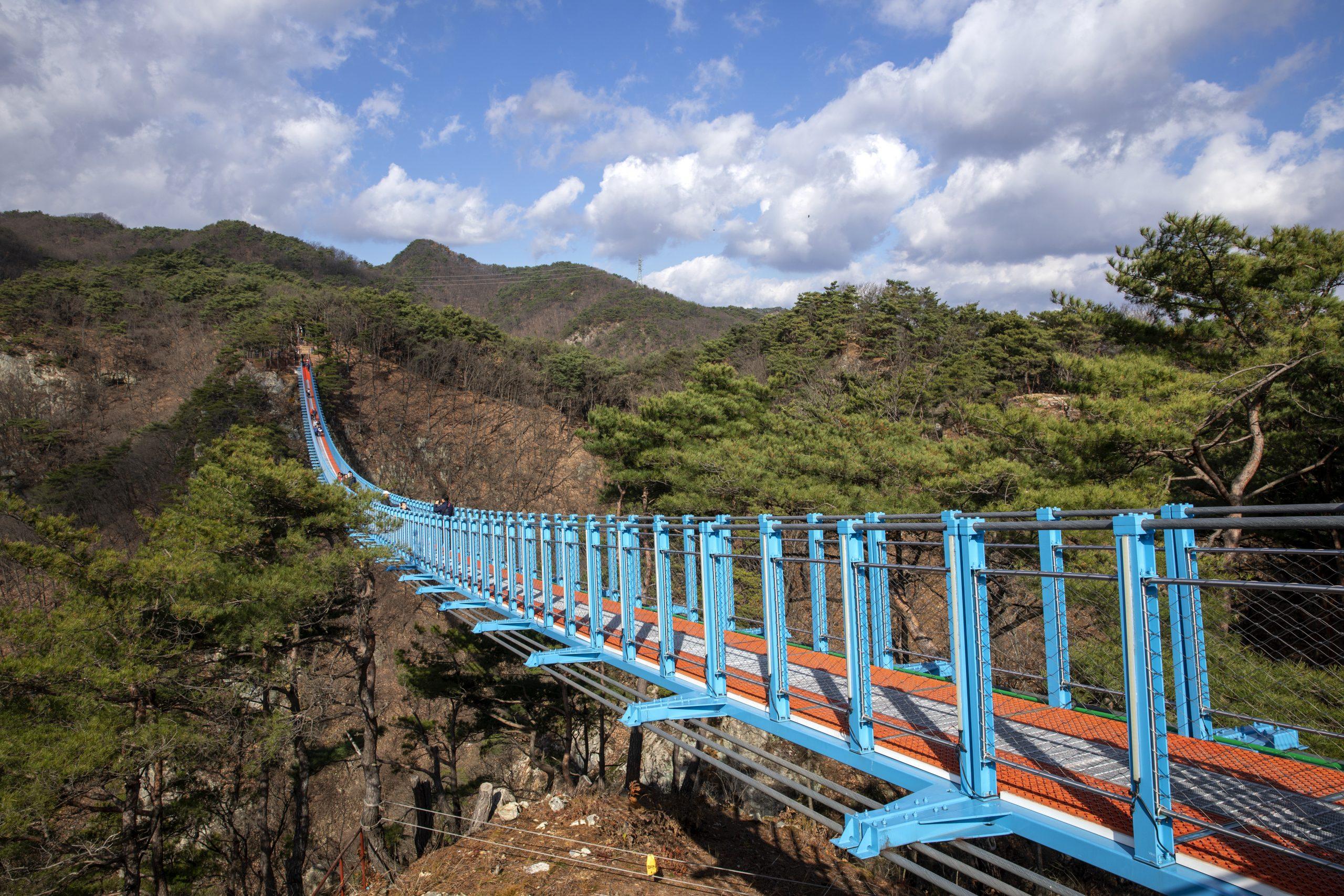 小金山吊り橋