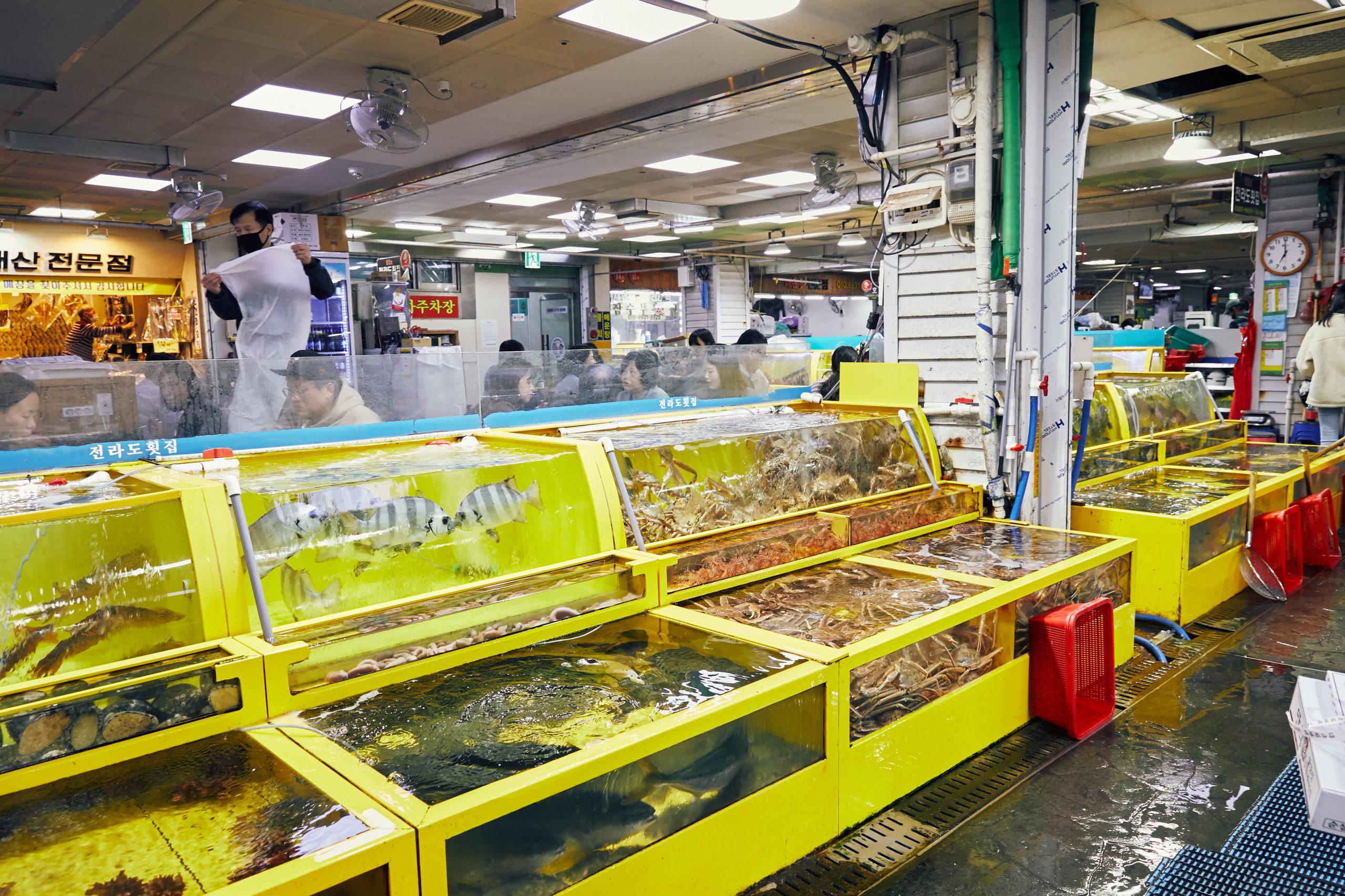 束草観光水産市場
